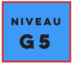 Gradé niveau 5